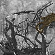 Devil's Tree Art Print