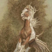 Devon The Gypsy Horse Art Print