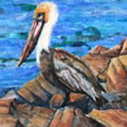 Dick The Pelican Art Print