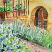 Dievole Vineyard Print by Judy Swerlick