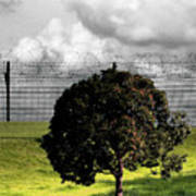 Digital Photography - The Prisoner Art Print