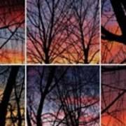 Digital Winter Trees Art Print