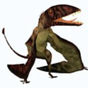 Dimorphodon Pterosaur Art Print