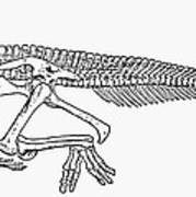 Dinosaur: Corythosaurus Art Print