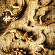 Dinosaurs In A Bone Display Art Print
