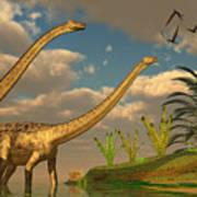 Diplodocus Dinosaur Romance Art Print