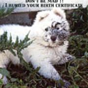 Dirty Dog Birthday Card Art Print