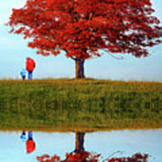 Discovering Autumn - Reflection Art Print