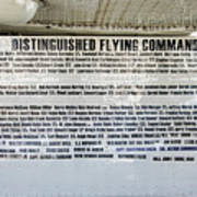 Distinguished Flying Command  Art Print