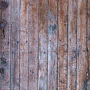 Distressed Door Art Print