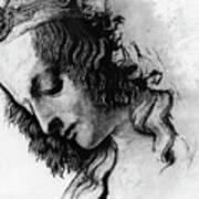 Districhi Di Magdalene Art Print
