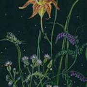 Ditchweed Fairy Daylily Art Print