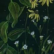 Ditchweed Fairy Milkweed Art Print