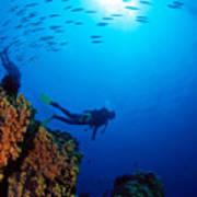 Diving Scene Art Print