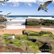 Do-00046 Birdie Beach Art Print