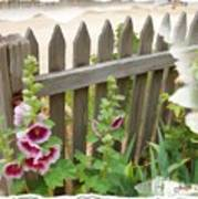 Do-00099 Fence-flowers Art Print