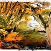 Do-00268 Trees On Water In Avoca Estuary Art Print