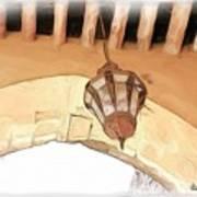 Do-00326 Old Lantern In Beiteddine Art Print