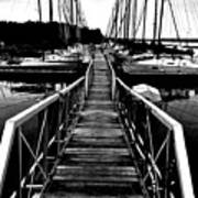 Dock And Sailboats Art Print