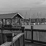 Dock At Mandarin Park Black And White Art Print