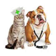 Dog And Cat Veterinarian And Nurse Art Print