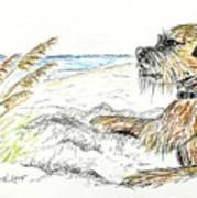 Dog By The Sea Art Print