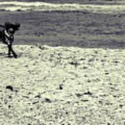 Dog Frolicking On A Beach Art Print