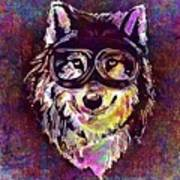 Dog Funny Cheeky Cap Animal Wild  Art Print