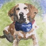 Dog In Bow Tie Art Print