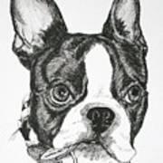 Dog Tags Art Print