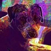 Dog Terrier Russell Pet Animal  Art Print
