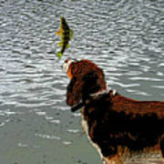 Dog Vs Perch 4 Art Print