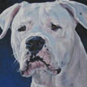 Dogo Argentino Art Print