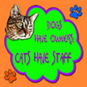 Dogs Have Owners Cats Have Staff Art Print