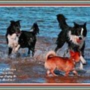 Dogs Playing On The Beach No. 2 L A With Decorative Ornate Printed Frame. Art Print