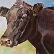 Dolly The Angus Cow Art Print