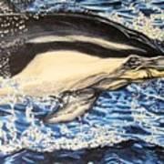 Dolphin Blue Art Print