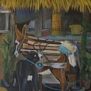 Donkey  At Taco Stand Art Print