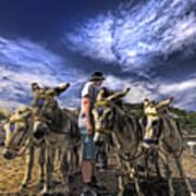 Donkey Rides Art Print