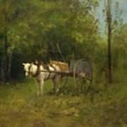 Donkey With Cart Art Print