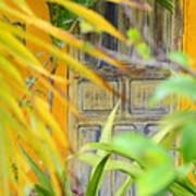 Door To Paradise Art Print