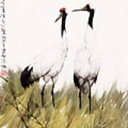 Double Crane Art Print