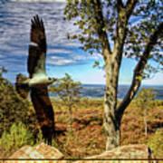 Double Exposure Osprey And High Point Nj Art Print