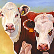 Double Trouble Hereford Cows Art Print