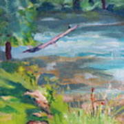 Downstream At Big Spring Art Print
