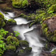 Downstream From The Waterfalls Art Print