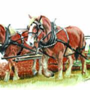 Draft Horses Art Print