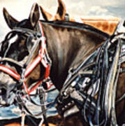 Draft Mules Art Print by Nadi Spencer