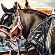 Draft Mules Art Print