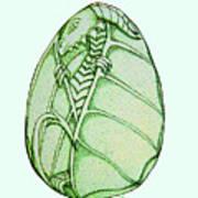 Dragon Egg Art Print